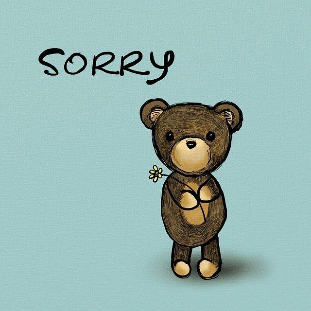 Sorry Bear Teddy Toy Cute Apology  - JenDigitalArt / Pixabay